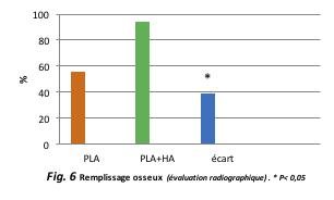 Fig. 6 Remplissage osseux (évaluation radiographique) .